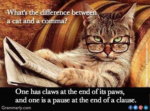 Cat v comma