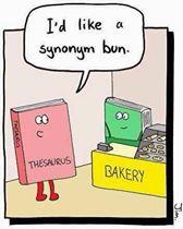 Synonym bun